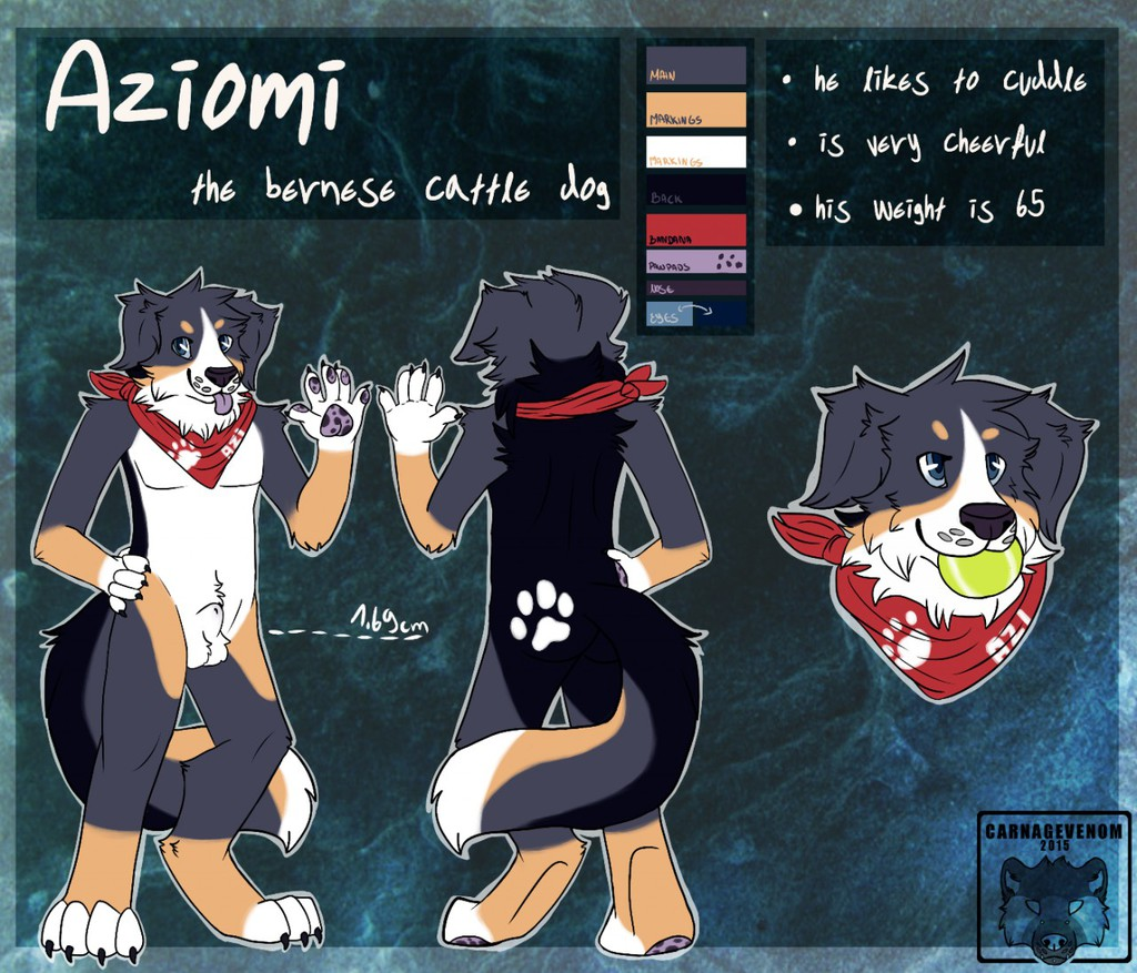 Aziomi Reference Sheet