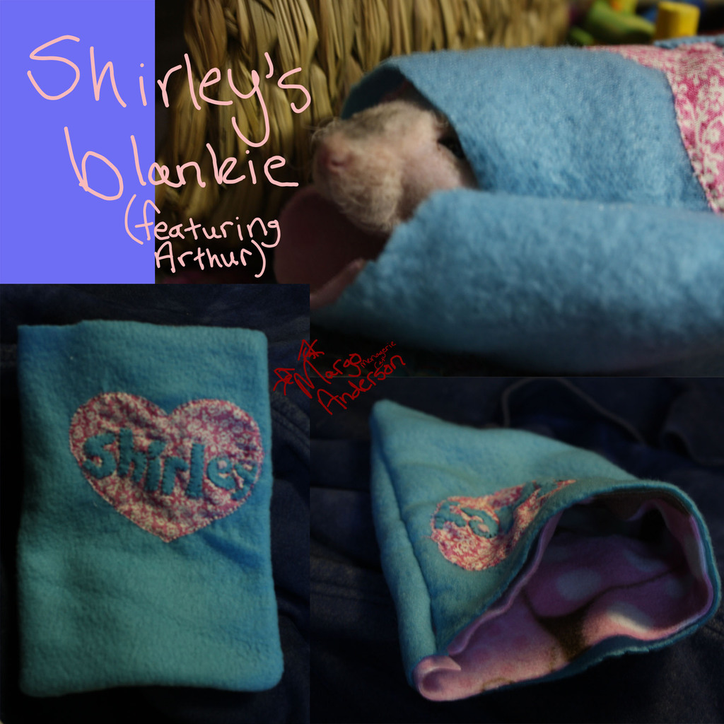 Featured image: Shirley's Blanket