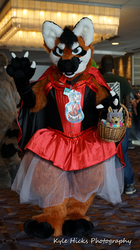 LIttle Red Riding Fangio MFF 2017 2
