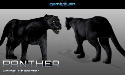 Panther Animal Character Animation