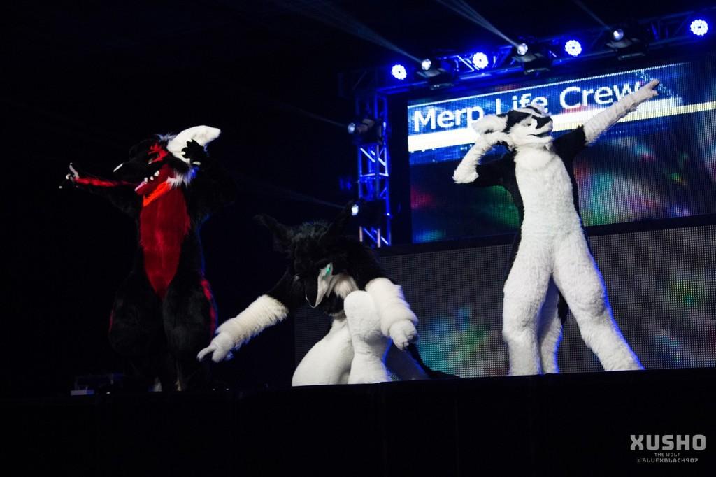 Merp Life Crew - Live Action