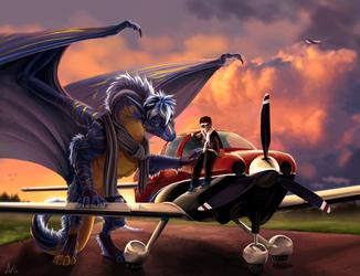 Plane inspection