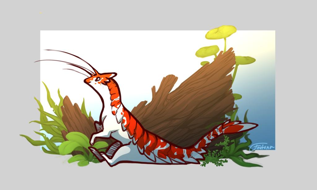 Shrimpy boi