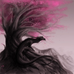 Sakura and the Dragon