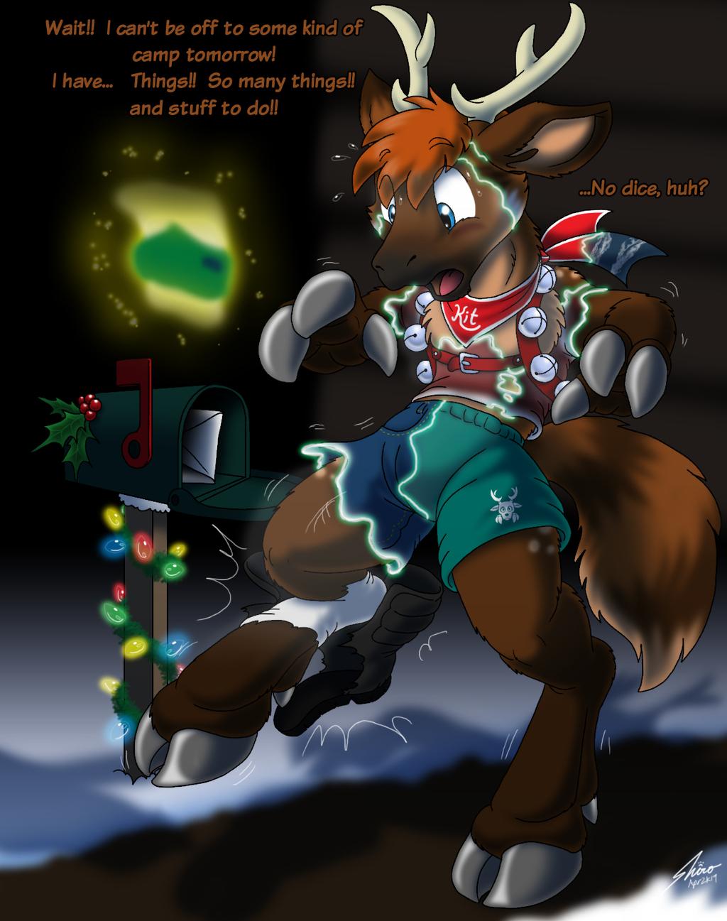 Kitcoon reindeer off- season training camp 3