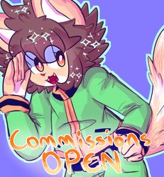 COMMISSION INFO (OPEN)