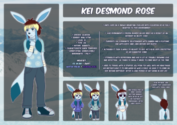 Kei Reference Sheet 2018