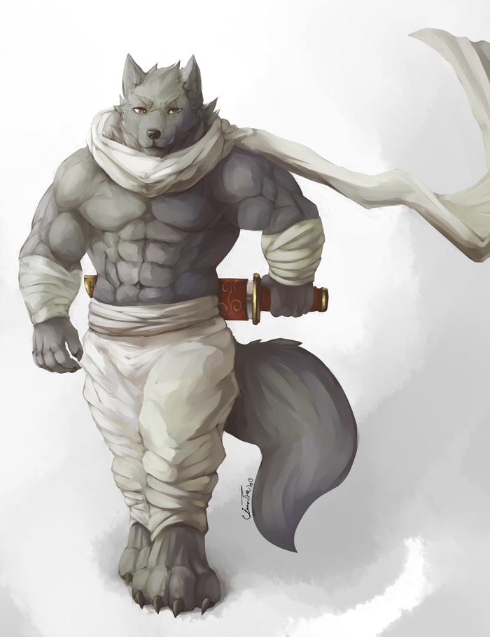 Wolven Ninja