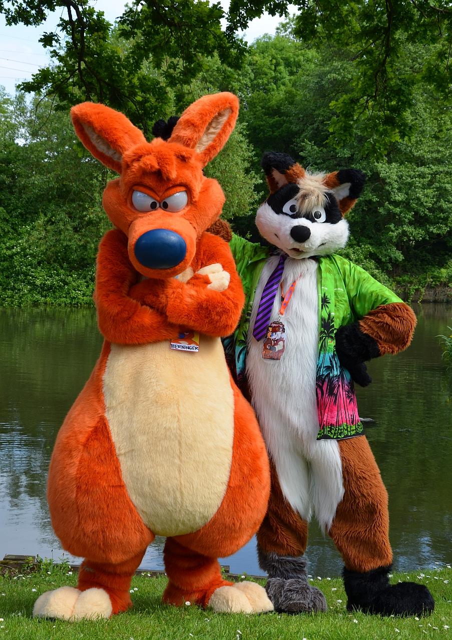 Happy Fox, Grumpy 'Roo
