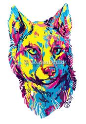 Color-Splash Wolf Sticker