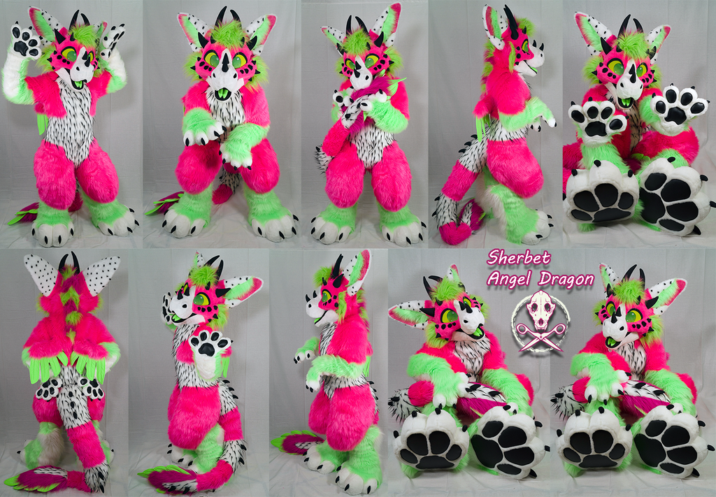 Most recent image: Angel Dragon Fruit