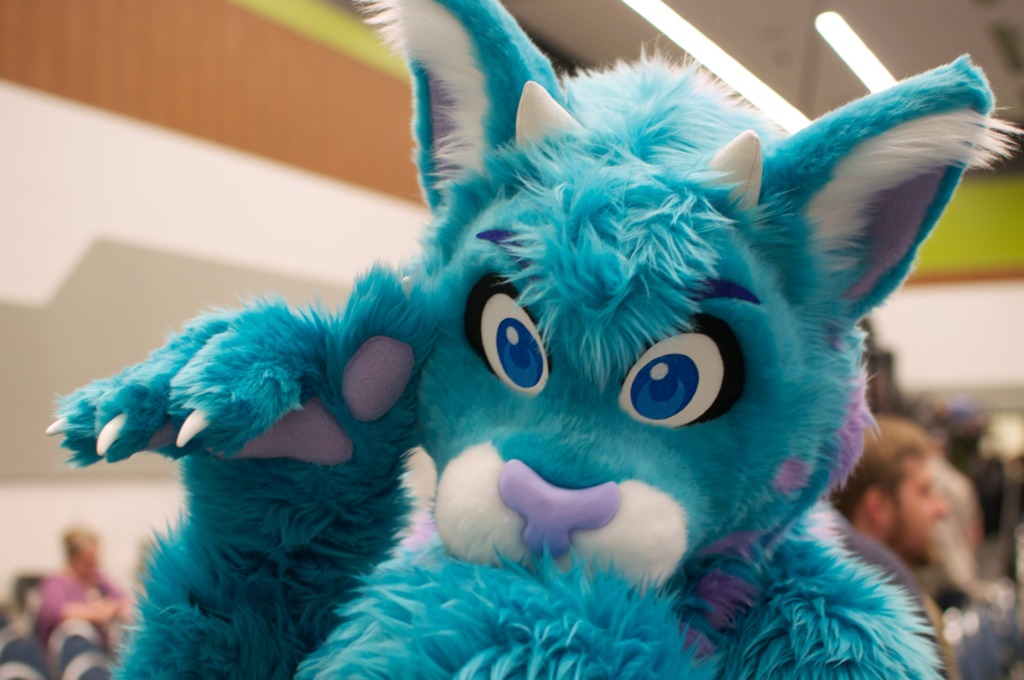 Further Confusion 2013 (#2015)