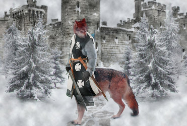 Red The Medieval Wolfaur Knight