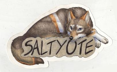 Saltyote Badge