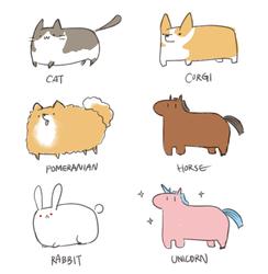 Mochi Animals