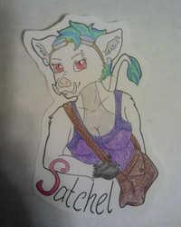 Satchel Badge