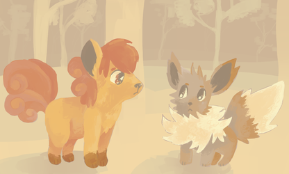 pmd forest