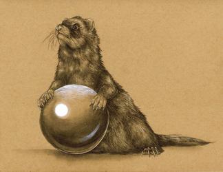 Commission #32 - Ferret