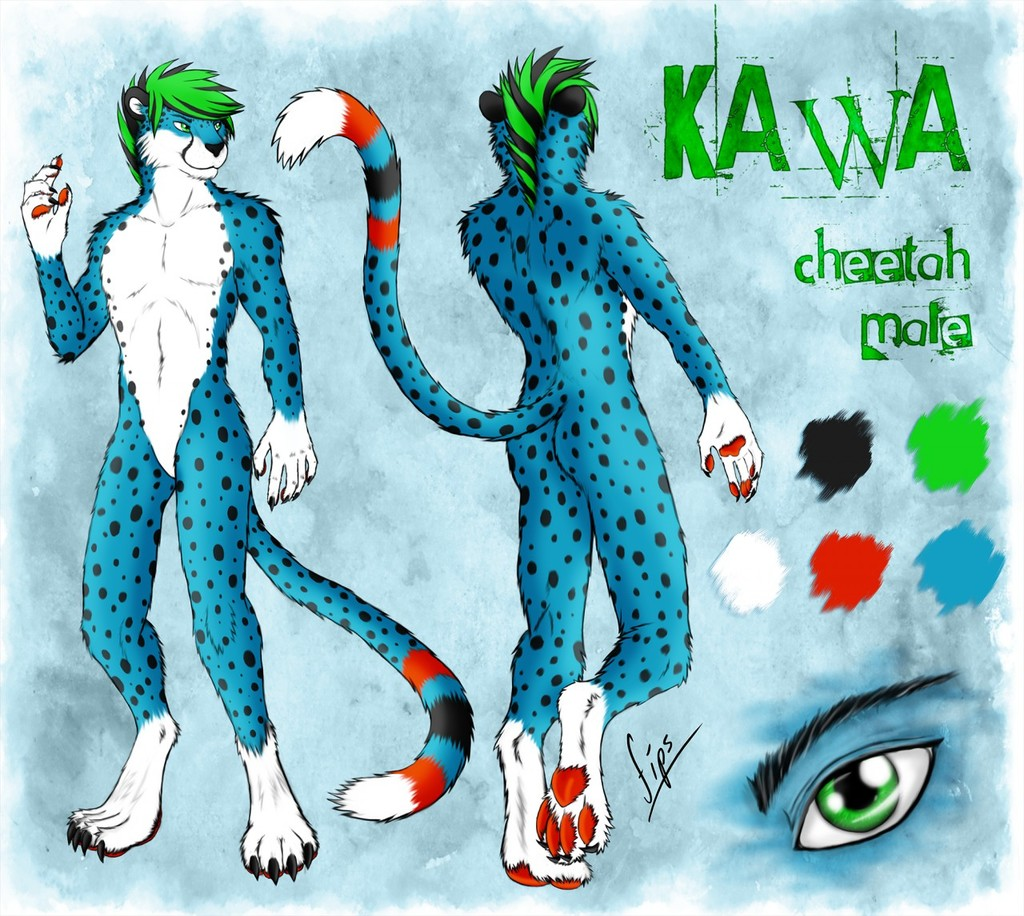 Kawa Reference Sheet [SFW]