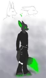 Black and glowy green fennec