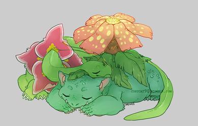 comm - warm nap