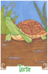 Turtle (2014)