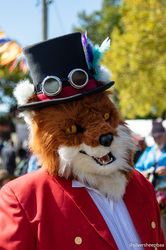 Ironfest 2018: Fox Hunting Fox