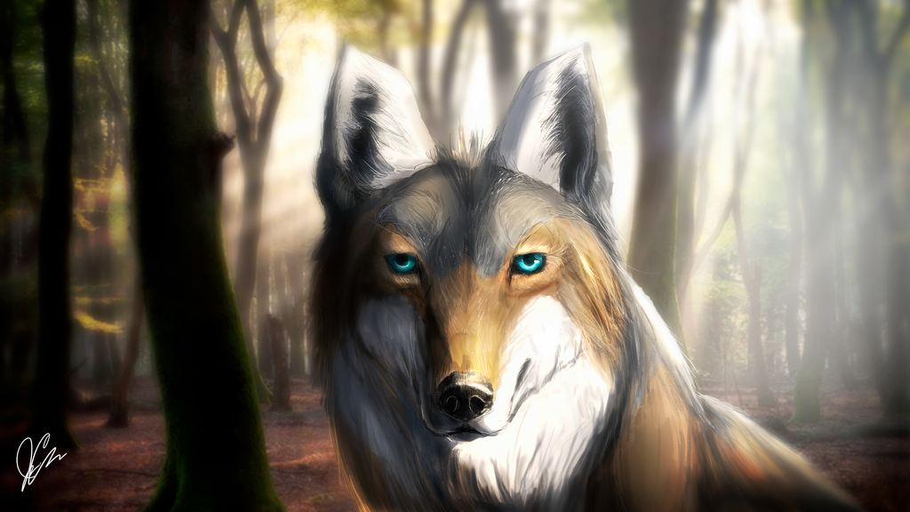 Most recent image: Lindya - Coyote - Gift for Solkeyia