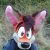 Avatar for ScruffytheFox