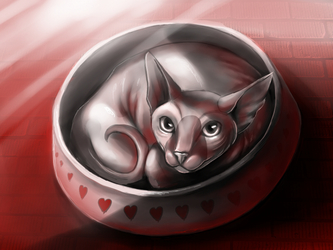 Kitty curled up in a dish - $20 commission