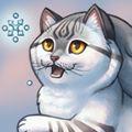 Cumulous Cats - Frosty Felines