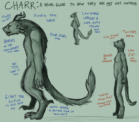 CHARR: A VISUAL GUIDE