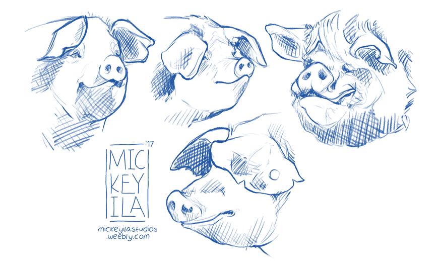 Pig Warm Up