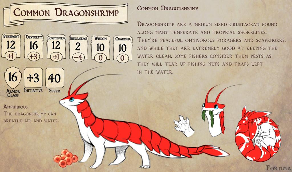 [DnD] Common Dragonshrimp
