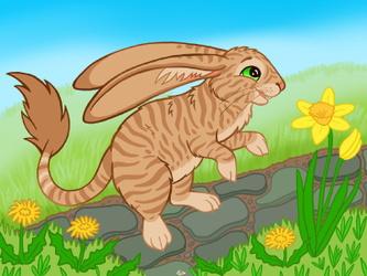 Spring Cabbit