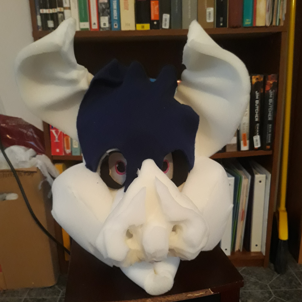 Fursuit Head