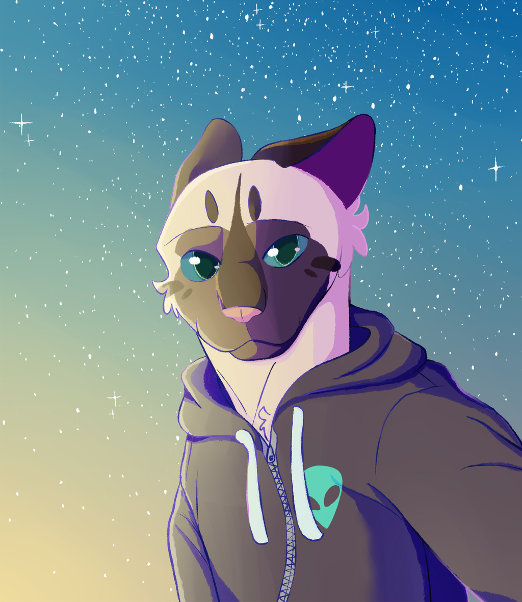 Most recent image: Starboy
