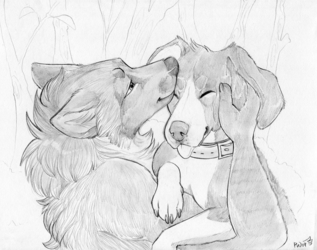 Affectionate doggies