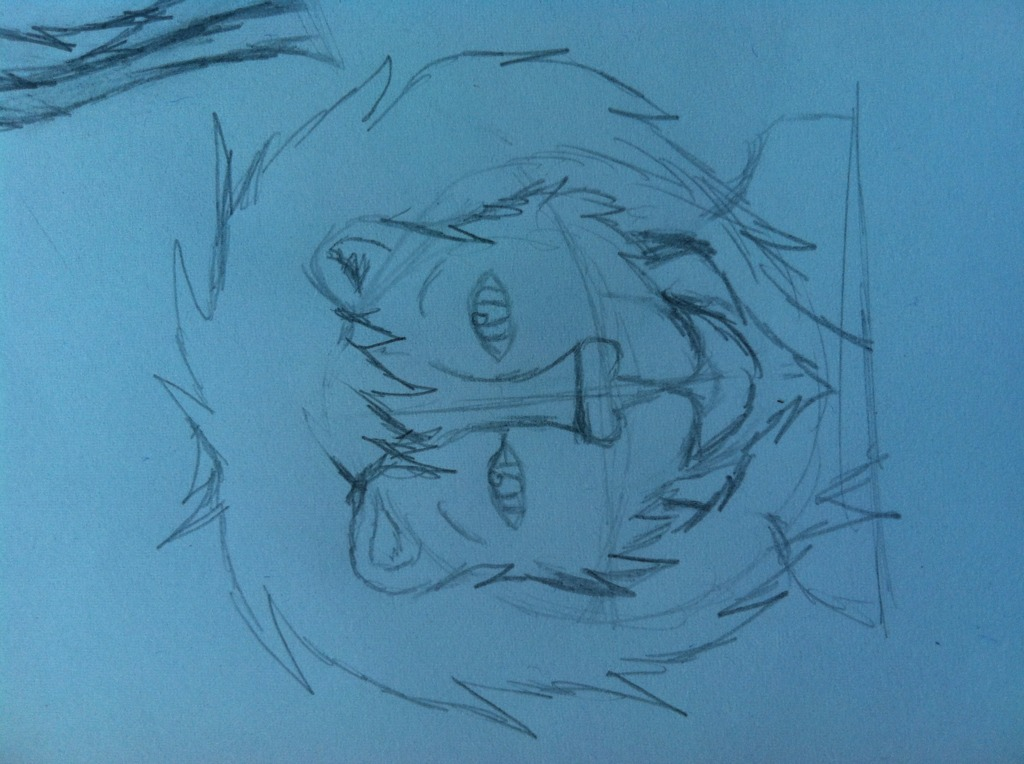 Random lion drawing