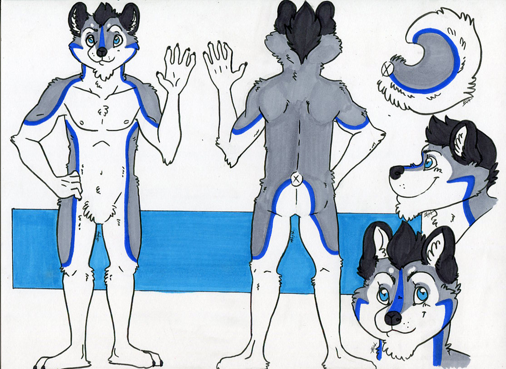 Cosmo Ref Sheet!
