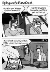 Epilogue of a Plane Crash