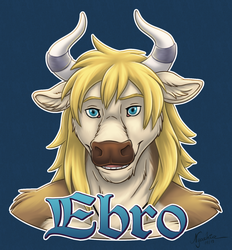 Ebro Badge