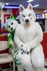 BaFURst 2018: Cuddle Wolf