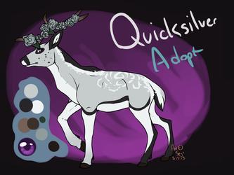 Quicksilver Adopt- OPEN
