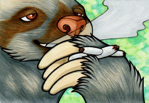 Sloth Rogen