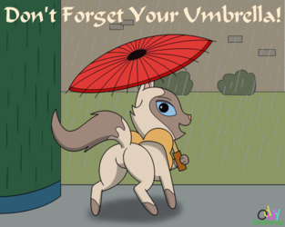Don't Forget Your Umbrella!