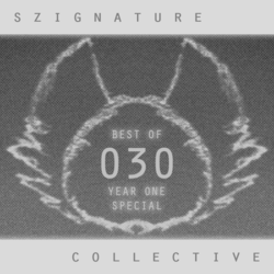The Szignature Collective :: 030 (Best of Year One)