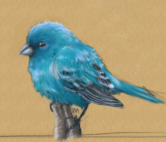 Most recent image: Birdy Colored attempt