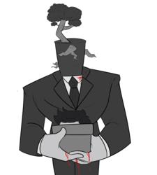 Bonsai Man