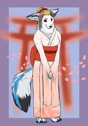 Cherry Blossoms [IA]